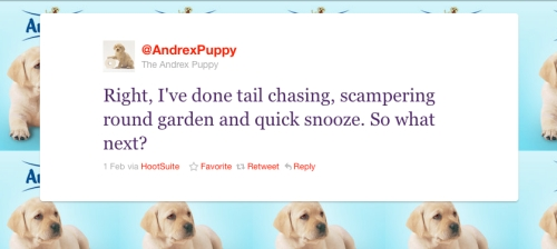 "Andrex ""Nintendogs"". Fit to wipe your arse?"